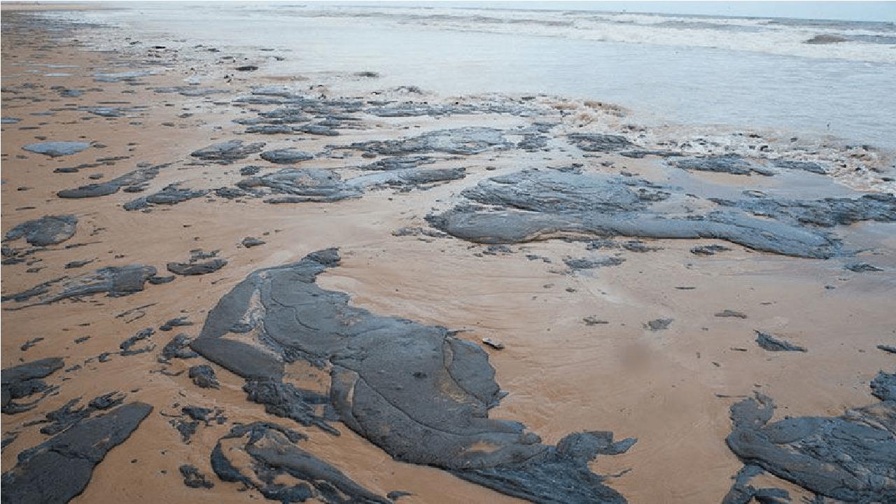 Óleo nas praias brasileiras teria vindo da África, diz estudo do Inpe