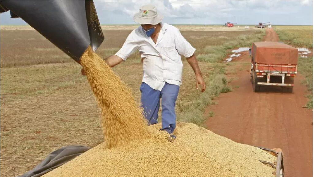 Brasil deve ter a maior produção de grãos da história