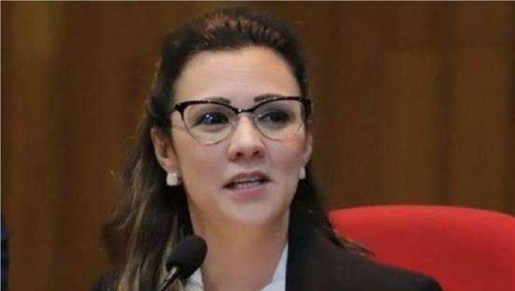 """""""Churrasco não é crime"""", diz advogada de Bolsonaro ao rebater CPI"""